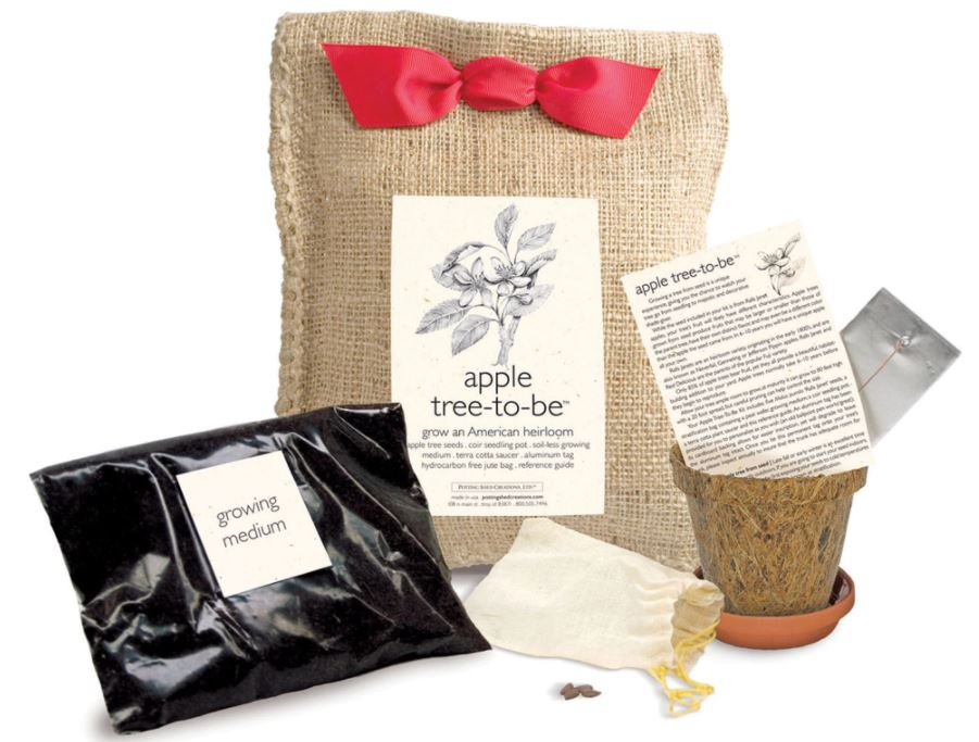 Apple Tree Kit