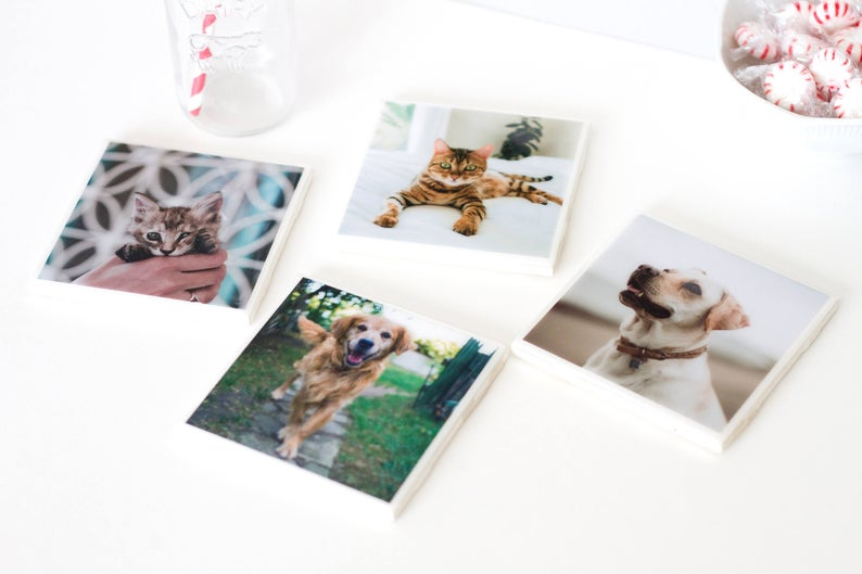 Customized Dog Photo Coasters